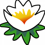 Icône de WxGéométrie sous Debian